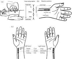 Non Invasive Holistic Health Measurements Using Pulse