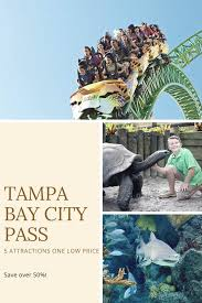 the tampa bay city pass provides admission to tampa s top 5 attractions busch gardens tampa bay the florida aquarium zootampa at lowry park