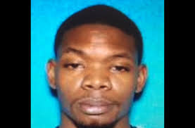 Clarksville police looking for man who allegedly fired shots at 4 women |  ClarksvilleNow.com