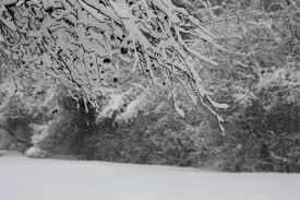 poem stopping by woods on a snowy evening literaster whose woods these are i think i know his house is in the village though he will not see me stopping here to watch his woods fill up snow