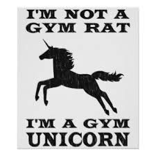 Image result for gym rat
