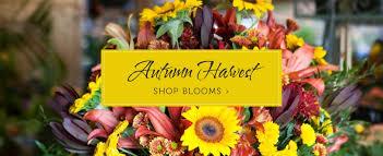 miami florist hirni s wayside garden florist