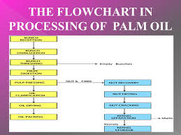 The Processing Of Palm Oil Mill Mutoharoh Ppt Download