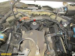 6 5l gm diesel fuel filter replacement procedures  6 5 gm diesel fuel filter location