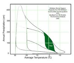 Taiga Temperature Chart The Boreal Forest Biome