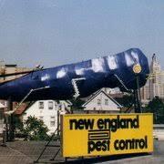 Big Blue Bug Solutions Big Blue Bug Solutions 18 Photos 42 Reviews Pest Control 161