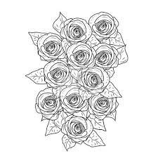 Fototapeta Růže Květina černobílá Grafika Vector Illustrationblack A