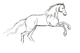 horses drawings. Modren Horses How To Draw Horses On Drawings