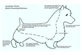 Exact Grooming Length Chart Dog Grooming Size Chart Hair