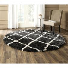 home interior simplified target braided rugs new design zebra area rug unique floors fabulous and