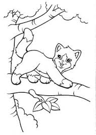 Small Picture Top 20 Free Printable Cat Coloring Pages For Kids Coloring Pets