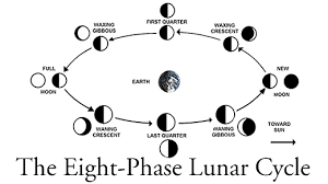 Lunar Phase Chart The Phases Of The Moon A Middle School Science Hands On