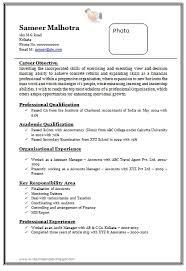 Over 10000 Cv And Resume Samples With Free Download: Professional with  regard to Sample Resume .doc