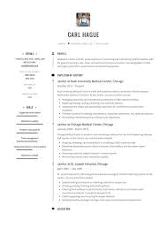 Janitor Resume Sample Janitor Resume Sample Template Example CV Formal Design 19