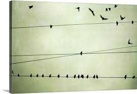 birds on telephone wire metal wall art