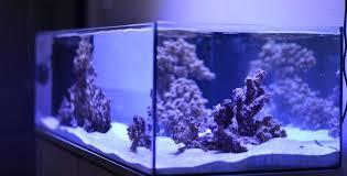 lovely best r aquarium led lighting design copernico co
