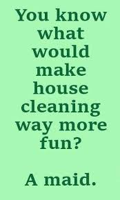 Fun Quotes Inspiration Make Cleaning Fun With These Funny Cleaning Quotes EnkiQuotes