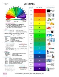Dbios Digitally Printed Ph Scale Chemistry Education Wall