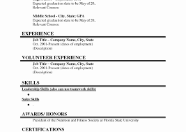 Student Resume For Summer Job College Student Resume Examples Summer Job Graduate No Experience 97