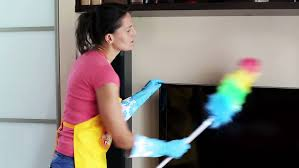 dusting furniture. Visually Similar Footage Dusting Furniture A