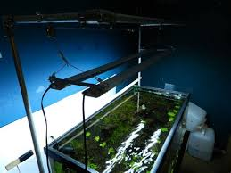 diy fish tank light hanger onvacations wallpaper aquarium light ideas newlifetab