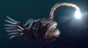 Finding Nemo Light Fish Anglerfish Light Finding Nemo Deep Sea Creatures Deep Sea