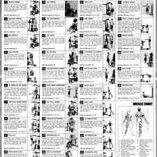 Guru Mann Exercise Chart Pdf Archives Konoplja Co New