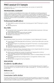 Agile Business Analyst Resumes Budget Analyst Resume Examples Budget Analyst Resume Examples 2