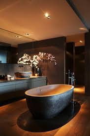 Best  Luxury Bathrooms Ideas On Pinterest Luxurious Bathrooms - Luxury bathrooms pictures