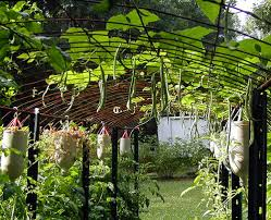 collection steel wire trellis garden pictures wire diagram panel is an inexpensive arched trellis material an arched trellis panel is an inexpensive arched trellis material an arched trellis