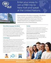 essay on the united nations how to write a model un position paper  write an essay and win a trip to the united nations headquarters write an essay and
