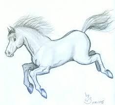 cute baby horses drawing. Contemporary Baby Cute Baby Horse Drawing  Photo1 To Baby Horses Drawing I