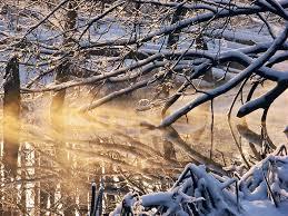 """Attēlu rezultāti vaicājumam """"saulaini ziemas skati"""""""