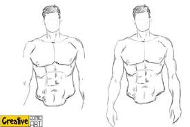 What parts of the torso protects the body? Drawing Basics Body Arms Legs Creative Comic Art