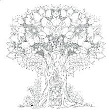 Printable Rainforest Coloring Pages Rain Forest Coloring Pages