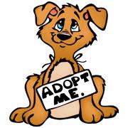 animal shelter clipart. Delighful Shelter Animal Adoption Clipart  Kid For Shelter T