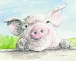 fitztown farm pig painting by morgan fitzsimons fitztown farm pig fine art prints and posters
