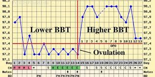 Body Temperature During Ovulation Chart How To Chart Temperature