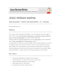 Front End Engineer Resume Examples