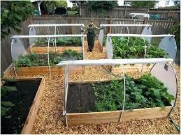 raised vegetable garden layout raised bed vegetable garden layouts wonderful best soil for raised vegetable garden raised vegetable garden layout