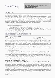 Resume Examples For Professionals Awesome Professional Resume Examples Administrative By Resume Rocketeer