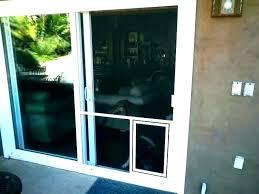 screen for sliding glass door patio door with screen fantastic pet doors home depot dog door
