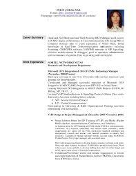 Resume Career Overview Example Sample Of Resume Career Summary Najmlaemah 21