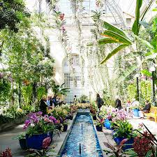 u s botanic gardens in washington d c romantic things to do romantic activity