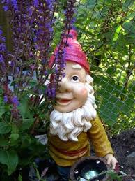 just say gnome