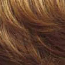 Paula Young Exclusive Color Chart Wig Color Chart Wig Colors Paula Young