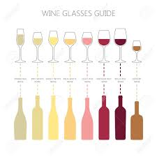 Wine Glasses And Bottles Guide Infographic Colorful Vector Wine