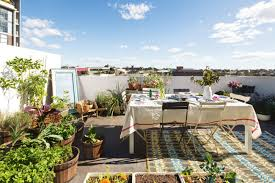 8 rooftop garden ideas