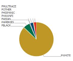 Dojo Pie Chart Dojo Toolkit Dojox Chart Missing Wire For Pie Charts