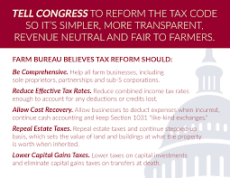 It\u0027s Time to Focus on Tax Reform \u2013 First Furrow